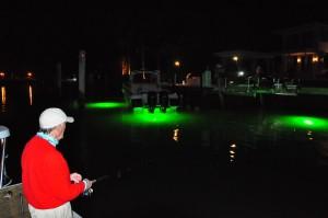 tarpon fishing dock lights