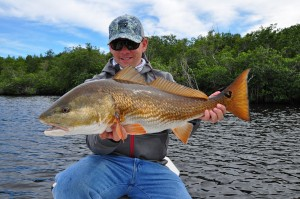 redfish,everglades,snook,sight fishing,fishing,flyfishing
